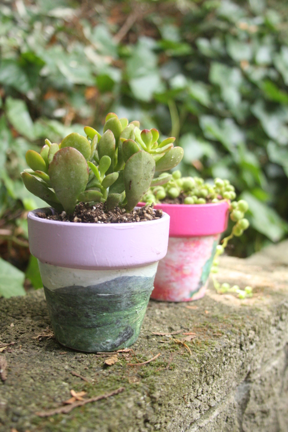 Use Mod Podge Photo Transfer to customize your own flower pots!